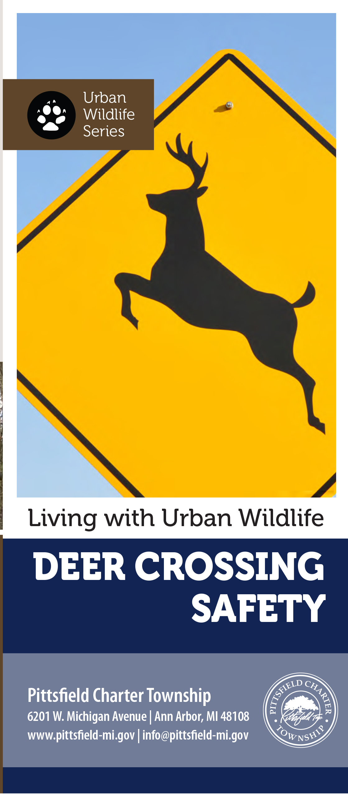 deer crossing safety