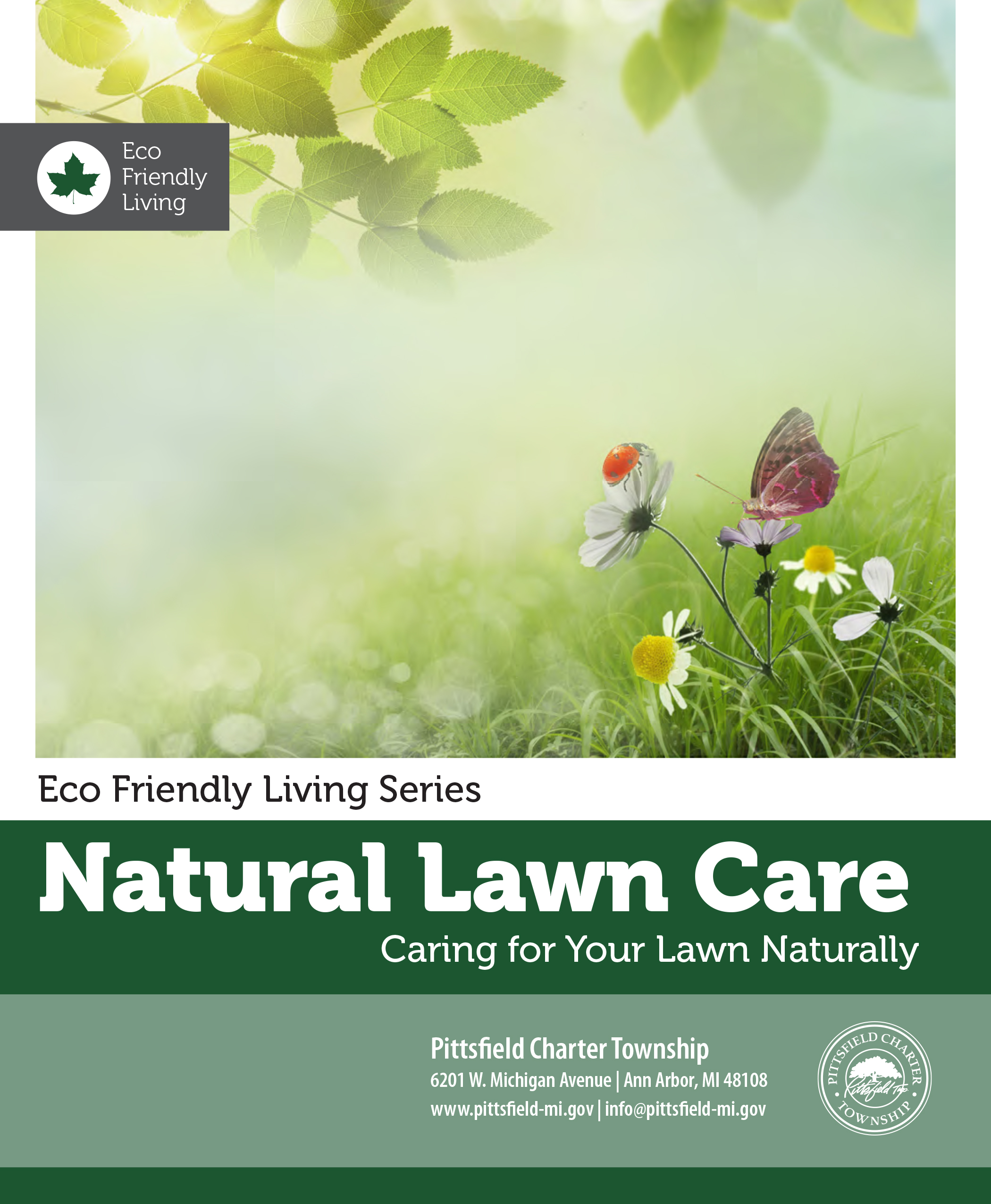 natural lawn care Opens in new window